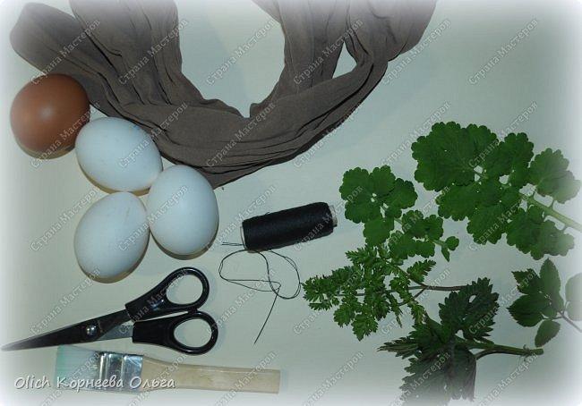 Здравствуйте. Пасха уже близко! Каждый год на Пасху я крашу яйца одинаково в луковом отваре. А для красоты добавляю рисунки натуральных листиков. Многие знают про этот способ окраски, но не всегда аккуратно получается расправить листик на яичке и получить в итоге четкий рисунок.  Я расскажу о некоторых простых хитростях, которые помогут добиться четкого очертания даже при использовании совсем молоденьких и мягких листочков, которые от одного прикосновения рвутся. фото 5