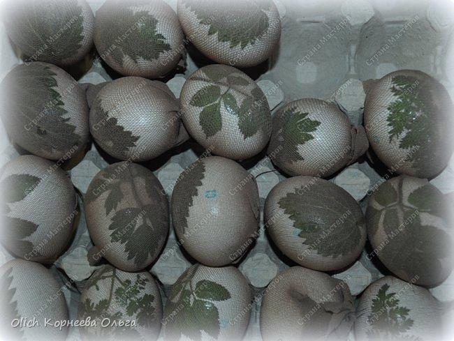 Здравствуйте. Пасха уже близко! Каждый год на Пасху я крашу яйца одинаково в луковом отваре. А для красоты добавляю рисунки натуральных листиков. Многие знают про этот способ окраски, но не всегда аккуратно получается расправить листик на яичке и получить в итоге четкий рисунок.  Я расскажу о некоторых простых хитростях, которые помогут добиться четкого очертания даже при использовании совсем молоденьких и мягких листочков, которые от одного прикосновения рвутся. фото 20