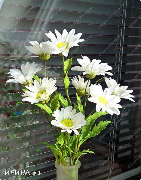 Здравствуйте! Выставляю на Ваш суд свои цветы из фома.  Без лишних слов, приглашаю  к просмотру.  Это моя финальная композиция Перезагрузки у своей новой хозяйки.  На фото замечательная представительница породы той-терьер Сашенька.  фото 4