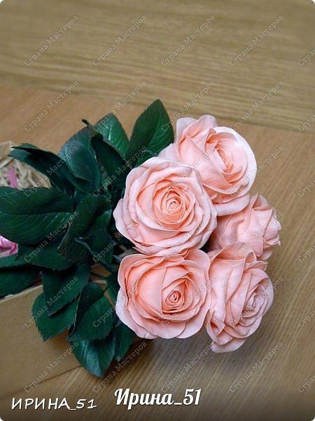 Здравствуйте! Выставляю на Ваш суд свои цветы из фома.  Без лишних слов, приглашаю  к просмотру.  Это моя финальная композиция Перезагрузки у своей новой хозяйки.  На фото замечательная представительница породы той-терьер Сашенька.  фото 7