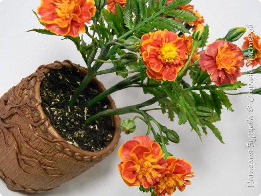 Мастер-класс по лепке бархатцев из холодного фарфора. В данном мастер-классе вы научитесь лепить полноразмерные, максимально приближенные к реальным цветы бархатцев, а так же сложные листья, и затем собирать всё это в веточки для букета. фото 1