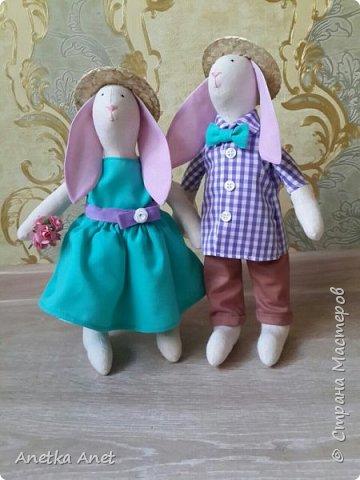 "Мои зайцы ""Стиляги"" фото 1"