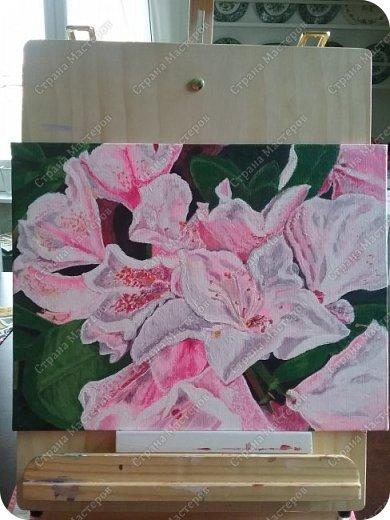 Рододендрон акриловыми красками фото 2