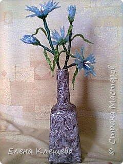 розы кустовые фото 19