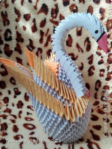 Двойной лебедь фото 1