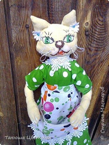 Кошка пакетница Яблонька. в кармашке гусь. Пожелание добра и благополучия. фото 3