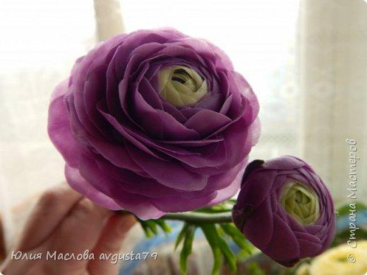 Ещё одни любимки - ранункулюсы. Фиолетовый цвет такой же капризный как и красный. При разном освещении - совершенно разные оттенки ! Поэтому фото много.  фото 11