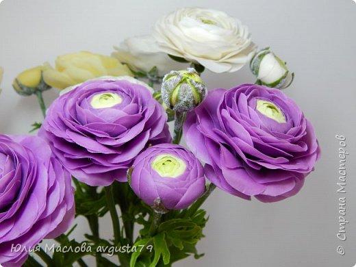 Ещё одни любимки - ранункулюсы. Фиолетовый цвет такой же капризный как и красный. При разном освещении - совершенно разные оттенки ! Поэтому фото много.  фото 15