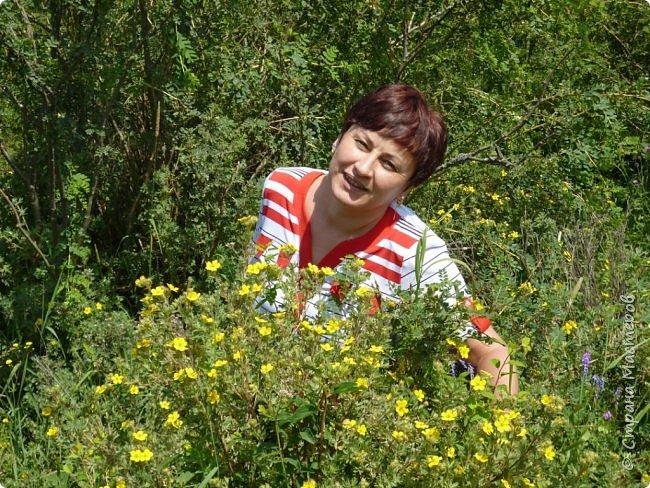 Это Иоанн Кронштадтский, святой праведник, сказал, что цветы – остатки рая на земле. И разве нельзя назвать райским местом этот родник в Бешпельтирском логу? У нас, в Горном Алтае, такая красота повсюду. И я приглашаю вас на неспешную прогулку по цветущему Алтаю. фото 69