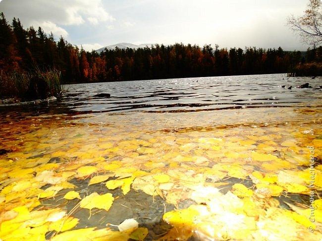 Это Иоанн Кронштадтский, святой праведник, сказал, что цветы – остатки рая на земле. И разве нельзя назвать райским местом этот родник в Бешпельтирском логу? У нас, в Горном Алтае, такая красота повсюду. И я приглашаю вас на неспешную прогулку по цветущему Алтаю. фото 9