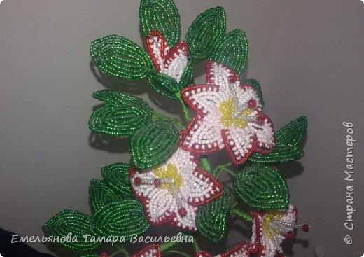 Фантазийный цветок из бисера фото 10