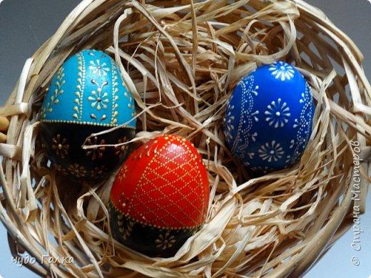 Каждый год, к Пасхе рисую я яйца. В этом году получились вот такие фото 2