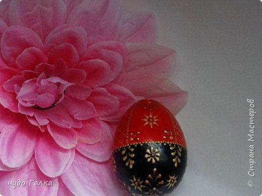 Каждый год, к Пасхе рисую я яйца. В этом году получились вот такие фото 6