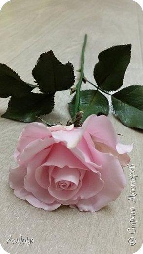Здравствуйте!  Наткнулась я недавно в СМ на красивейшие розы, выполненные мастерицей Натальей  http://stranamasterov.ru/user/78045  по МК Александры Троицкой. И так мне захотелось попробовать сделать такие же. Два праздничных майских дня было потрачено на изучение и изготовление. Получилось пока три розочки. фото 3