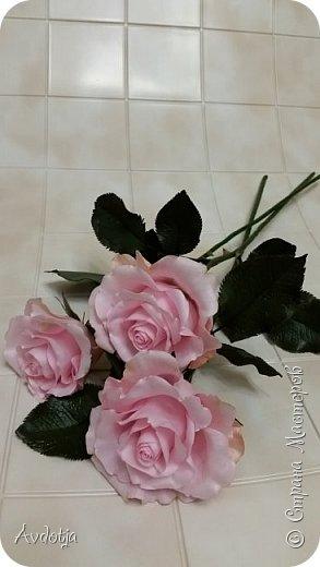 Здравствуйте!  Наткнулась я недавно в СМ на красивейшие розы, выполненные мастерицей Натальей  http://stranamasterov.ru/user/78045  по МК Александры Троицкой. И так мне захотелось попробовать сделать такие же. Два праздничных майских дня было потрачено на изучение и изготовление. Получилось пока три розочки. фото 8