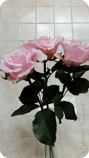 Здравствуйте!  Наткнулась я недавно в СМ на красивейшие розы, выполненные мастерицей Натальей  http://stranamasterov.ru/user/78045  по МК Александры Троицкой. И так мне захотелось попробовать сделать такие же. Два праздничных майских дня было потрачено на изучение и изготовление. Получилось пока три розочки. фото 7
