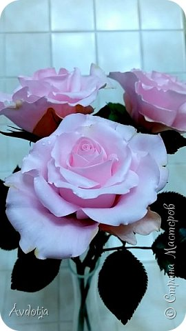 Здравствуйте!  Наткнулась я недавно в СМ на красивейшие розы, выполненные мастерицей Натальей  http://stranamasterov.ru/user/78045  по МК Александры Троицкой. И так мне захотелось попробовать сделать такие же. Два праздничных майских дня было потрачено на изучение и изготовление. Получилось пока три розочки. фото 1