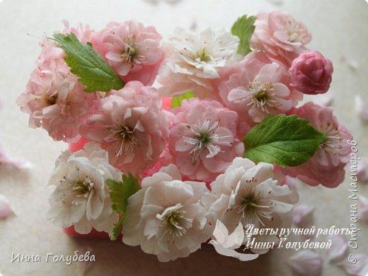 Девочки,обещанный мк по майской розе. фото 1