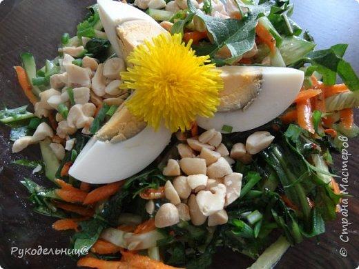 Всем добрый день жители СМ. Я к вам с салатом из одуванчиков. У меня уже есть салат из одуванчиков вот здесь http://stranamasterov.ru/node/765718. Это мой любимый весенний салат. Весной прямо организм требует зелени, очень хочется этого салатика. Но сегодня захотелось чего-то новенького, поэтому родился этот рецепт. Свежо, вкусно и полезно. фото 9