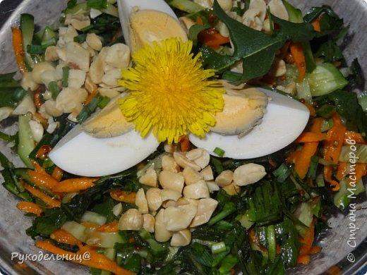 Всем добрый день жители СМ. Я к вам с салатом из одуванчиков. У меня уже есть салат из одуванчиков вот здесь http://stranamasterov.ru/node/765718. Это мой любимый весенний салат. Весной прямо организм требует зелени, очень хочется этого салатика. Но сегодня захотелось чего-то новенького, поэтому родился этот рецепт. Свежо, вкусно и полезно. фото 1