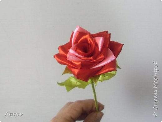 Всем привет. Роза уехала в подарок на ДР. фото 1