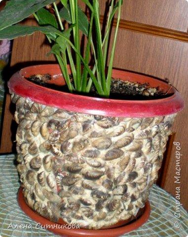 Плошка для цветка декорированная ракушками