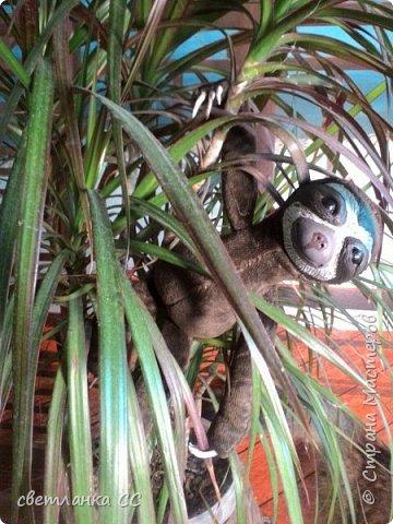 По МК Ниа Котоми с небольшими изменениями в выкройке,родился у меня ленивец Лорри фото 2