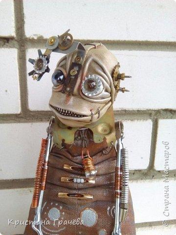 Инопланетный странник. фото 1