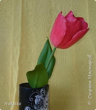 Добрый день всем жителям и гостям Страны! Хочу выразить свою благодарность Антонине Мельниченко за ее прекрасный вебинар по лепке тюльпана. И соответственно показать как я усвоила урок. фото 2