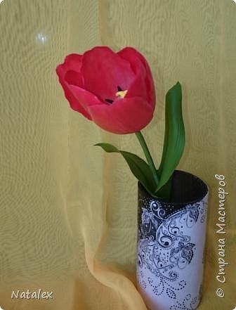 Добрый день всем жителям и гостям Страны! Хочу выразить свою благодарность Антонине Мельниченко за ее прекрасный вебинар по лепке тюльпана. И соответственно показать как я усвоила урок. фото 3