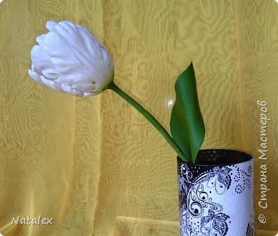 Добрый день всем жителям и гостям Страны! Хочу выразить свою благодарность Антонине Мельниченко за ее прекрасный вебинар по лепке тюльпана. И соответственно показать как я усвоила урок. фото 4