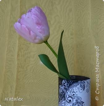 Добрый день всем жителям и гостям Страны! Хочу выразить свою благодарность Антонине Мельниченко за ее прекрасный вебинар по лепке тюльпана. И соответственно показать как я усвоила урок. фото 6