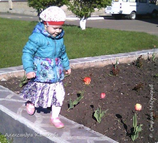 Тюльпаны на клумбе детского сада. Не смогла пройти мимо, да и дочки не дали. Фото сделаны на телефон, качество подводит.Простите. Фото сделаные вчера, 4 мая. фото 6