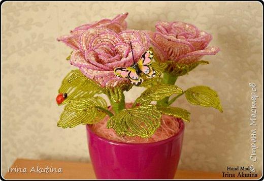 Розы из бисера фото 1