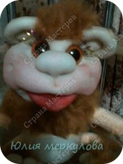 царство обезьян фото 6