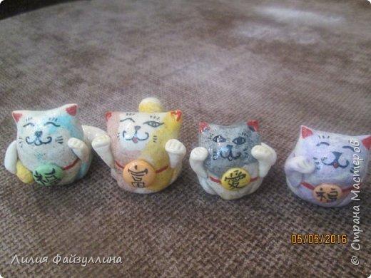 котики удачи. фото 2