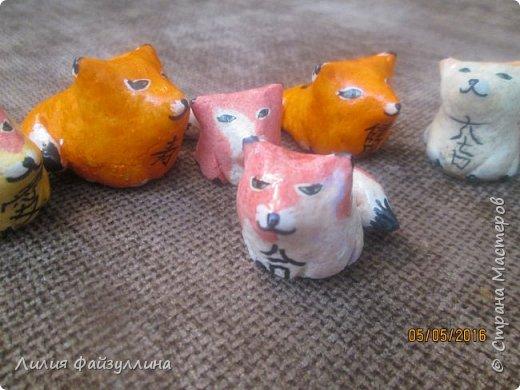 котики удачи. фото 9
