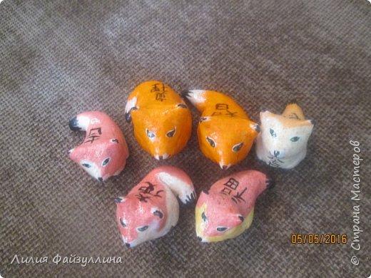 котики удачи. фото 11