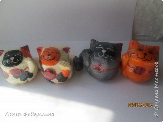 котики удачи. фото 14