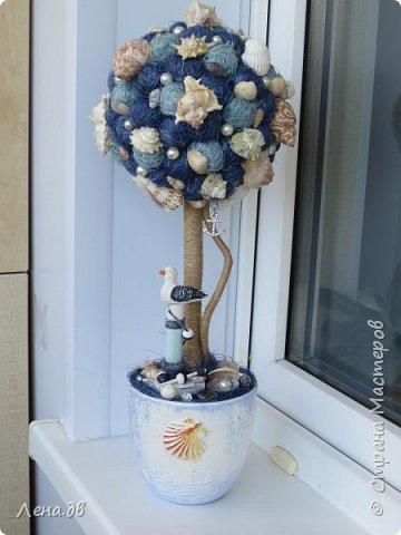 Вот такое получилось деревце в дополнение к аквариуму... фото 1