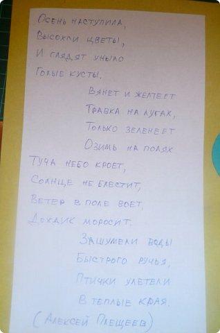 """Здравствуйте! Хочу показать книжку-туннель-раскладушку, которую делала в детский сад на """"Книжкину неделю"""". Книжка для совсем малышковской группы, поэтому тема выбрана самая популярная - времена года.   фото 28"""