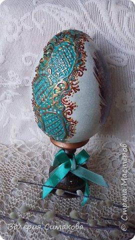 Большое яичко)))) перья с двух сторон разные.... фото 4