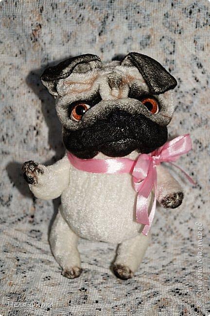 Собачка ростом около 18 см, сшита из велюра, тонирована маслом. Лапки подвижны, одёжка снимается. фото 3