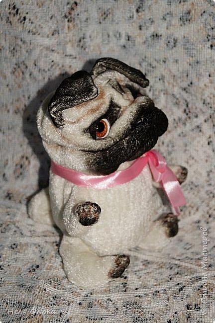 Собачка ростом около 18 см, сшита из велюра, тонирована маслом. Лапки подвижны, одёжка снимается. фото 4
