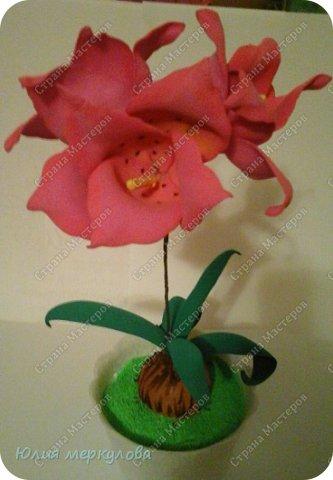 цветы из фома фото 23