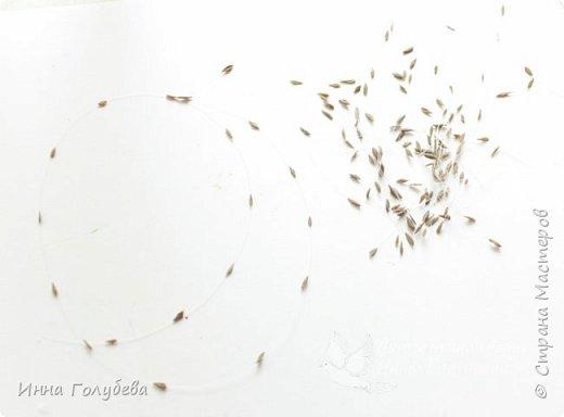 Всех с праздником Победы! Всем счастья,мирного неба над головой и благодарности в сердце за подвиг наших воинов! А я к вам не с пустыми руками) Позавчера подруга принесла букетик махровых маков,разной степени открытости,зная,что этим летом я поставила себе цель перелепить с натуры,как можно больше цветов) И вот вчера я решила повторить мак,пока он не обсыпался. Сам процесс постаралась отфоткать,основные этапы,на словах постараюсь объяснить подробности. Процесс трудоемкий только из-за количества лепестков( в моем маке их где-то 80-83),а в живом,наверное, и больше,но в остальном совсем несложно) фото 5
