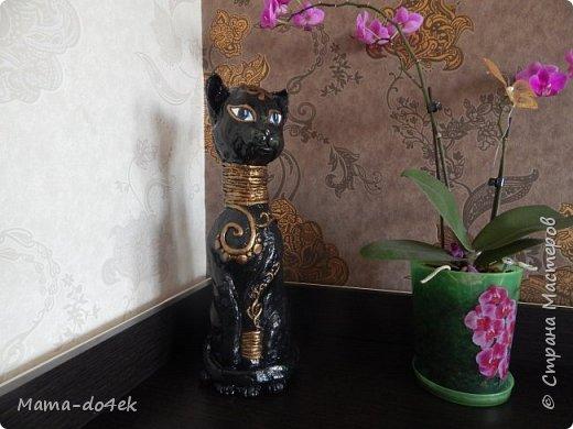 Кошка на бутылке. Египпетский коттт. фото 2