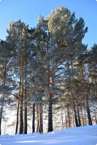 Одной из ярких жемчужин Кондинского района является единственный в районе оздоровительный центр  круглогодичного действия  «Юбилейный». Окруженный белоствольными берёзами и  опоясанный голубой лентой Корповской реки лагерь располагается в очень живописном месте и входит в число лучших лагерей Ханты – Мансийского автономного округа – Югры. фото 45