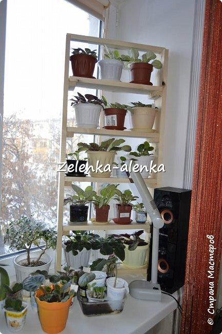 Чайный домик для мамы. фото 8