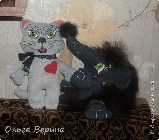 Котик и ежик фото 9